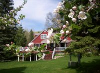 Bayfield in bloom