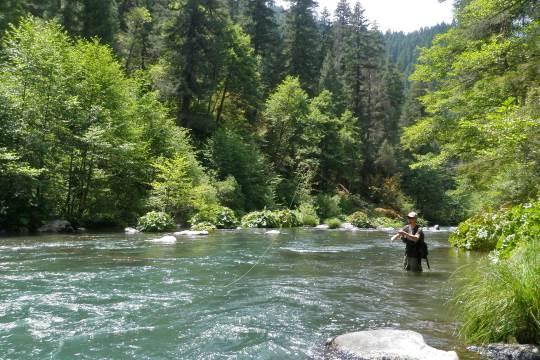 California river