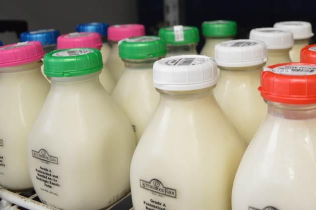 American milk