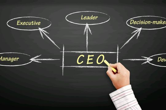 I want to be CEO