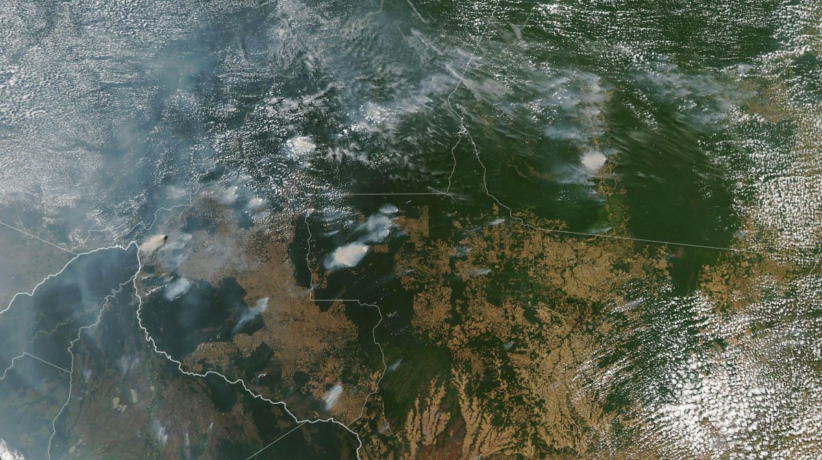 Forest fires in Brazil