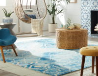 Living room color rug