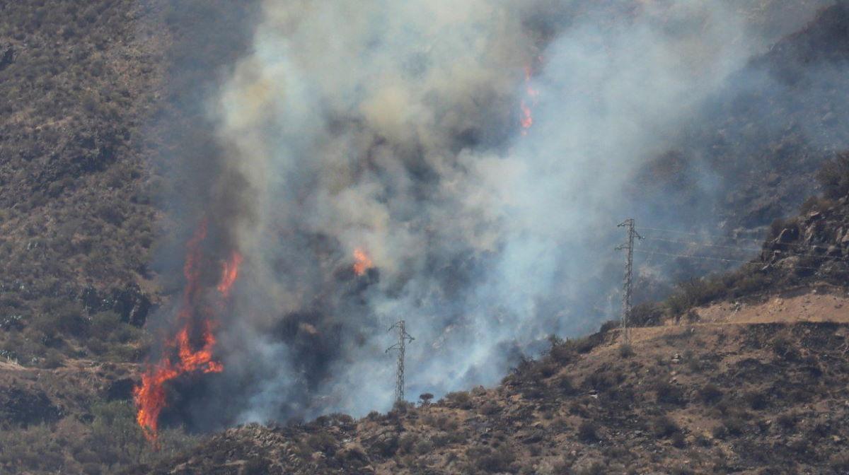 Tejeda wildfire